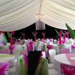 Did you know that you can choose your colour scheme for your event!